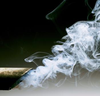 Exhaust fumes